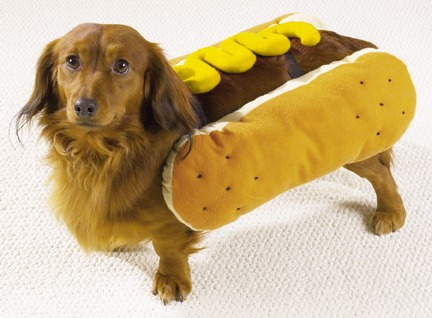 Hot Diggity Dog Costume Mustard